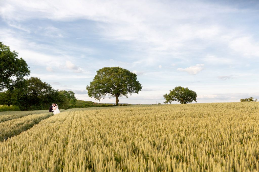 bride groom alone in cornfield manor hill house bromsgrove worcestershire oxford wedding photographers