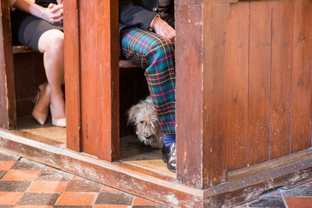 dog peers from pew church of st michael ceremony aston tirrold oxfordshire oxfored wedding photographer